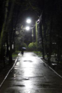 _MG_4784
